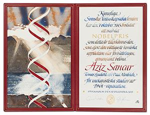 sancar-diploma